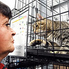 John P. Cleary | The Herald Bulletin<br /> Starr McCord talks to Yogi as the male cat tries to reach out with it's paw to her during the Animal Protection League's Meow-A-Thon Saturday at Harrah's Hoosier Park Racing and Casino.