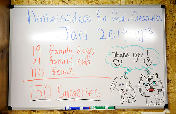 Don Knight   The Herald Bulletin<br /> Ambassadors for God's Creatures display their stats for the month of January on a dry erase board.