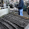 John P. Cleary | The Herald Bulletin<br /> Barber Manufacturing celebrating 125 years in business in Anderson. Here Brian Chism takes off a hand full of springs from the machine to pack them for shipment.
