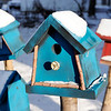 "Don Knight | The Herald Bulletin<br /> Bird houses outside Greg Adams shop at 702 Main Street in Lapel. Adams will be featured on the show ""Handcrafted America."""