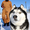 John P. Cleary |  The Herald Bulletin<br /> WHAT COLD?  Mark Johns layers up to protect himself from the cold as he takes his Husky dog Bandit out for a walk around Shadyside Park Tuesday. The sub-zero temperatures didn't bother Bandit as he was in his natural element enjoying the winter weather.