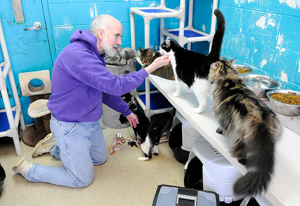Don Knight |  The Herald Bulletin<br /> APL volunteer Elmore Hammes hangs out in the cat room during their Super Saturday Open House. Hammes introduced prospective adopters to the different cats in the room and told them a little about their personality.