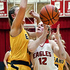 John P. Cleary | The Herald Bulletin<br /> Frankton's Bailey Tucker looses control of the ball as she goes up for a shot against Monroe Central's Jordyn Barga.