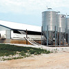 THB Photo/John P. Cleary    6/21/06    NEWS<br /> Rick Jarrett and his hog farm at 1500N & 700W.<br /> This is an overview of Jarrett's hog barn that can hold 4,000 animals.<br /> GOES WITH STORY BY JUSTIN
