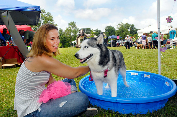 John P. Cleary | The Herald Bulletin<br /> Stormy cools off in one of the pooch pools as owner Angie Lawson sits with her during the Gone to the Dogs celebration Saturday at Shadyside Park's Activities Center.  The family and dog friendly event was sponsored by Project Bully Indiana. <br /> To view or buy this photo and other Herald Bulletin photos, visit<br /> photos.heraldbulletin.com.