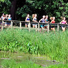 John P. Cleary | The Herald Bulletin<br /> Runners training at a cross country summer camp at AU take their workout along the river trail and around Killbuck Wetlands Tuesday afternoon.