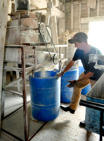 John P. Cleary    The Herald Bulletin<br /> Anthony Thompson puts another barrel under the grinder as they grind up corn in the feed mill Friday.