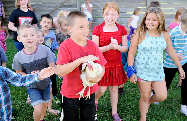 "Don Knight | The Herald Bulletin<br /> Zane Roller carries a chicken after catching it during vacation Bible School ""Down on the Farm"" at First Missionary Baptist Church in Elwood."