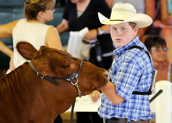Don Knight   The Herald Bulletin<br /> Miller Smith looks to the judge as he shows his Red Angus Heifer during the 4-H Fair Beef Show. Smith won Grand Champion Heifer with his shorthorn heifer.