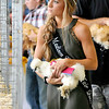 John P. Cleary | The Herald Bulletin<br /> 4-H poultry and swine shows.
