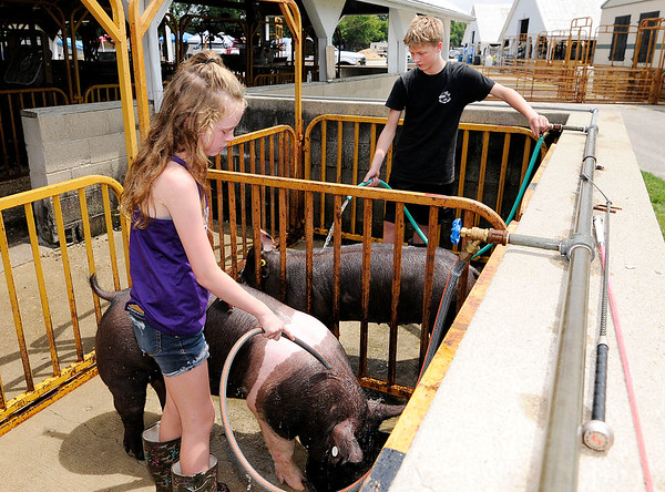 Don Knight | The Herald Bulletin<br /> From left, Sophie Cole with help from her cousin Ashtin Sigler keeps her pigs cool during setup for the 4-H Fair in Alexandria on Saturday. Sigler is also exhibiting swine this week.