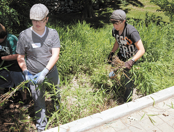 From left Kaden Hayes and Jonah Balderman pulls weeds as church youth groups volunteer to clean up Shadyside Park on Thursday as part of Project 765.