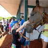 Hoosier Park and the Indiana Standardbred Assoc. hosted over 300 girl scouts and their family.