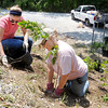 Anderson Parks Department Landscape Architect and Urban Forester Tammy Doty-Davis, right, and Ball State intern Corri Greschaw plant several trees at the Rangeline Nature Preserve on Tuesday. The work was a continuation of an Eagle Scout project by Matt Williamson to improve the access and amenities at the fishing pond on the property. Williamson wanted to be a part of the tree planting but wasn't available since he is now serving in the Coast Guard.