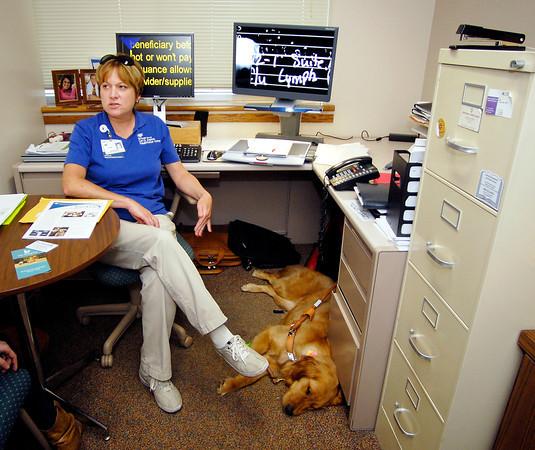 Darra, Joni Breedman's 20-month-old golden retriever seeing eye dog, rests under Joni's desk as she works in St. Vincent Anderson Regional Hospital's Erskine Rehabilitation Center.