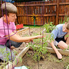 Don Knight | The Herald Bulletin<br /> Lisa Singleton-Roberts and her son Colin, 12, weed a garden bed at the Growing Anderson Community Garden on Thursday. The property holds 42 raised plots for gardeners.
