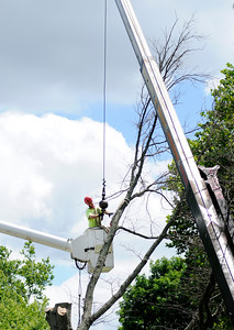 Don Knight | The Herald Bulletin A limb is secured before being cut as Anderson Arbor Care removes and trims trees during summer break at Anderson University.