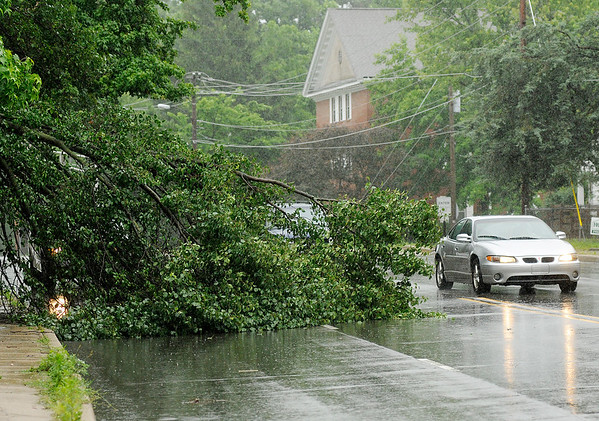 Don Knight   The Herald Bulletin<br /> Motorists drive around a downed tree limb blocking the west bound lanes of University Boulevard on Friday.