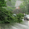 Don Knight | The Herald Bulletin<br /> Motorists drive around a downed tree limb blocking the west bound lanes of University Boulevard on Friday.