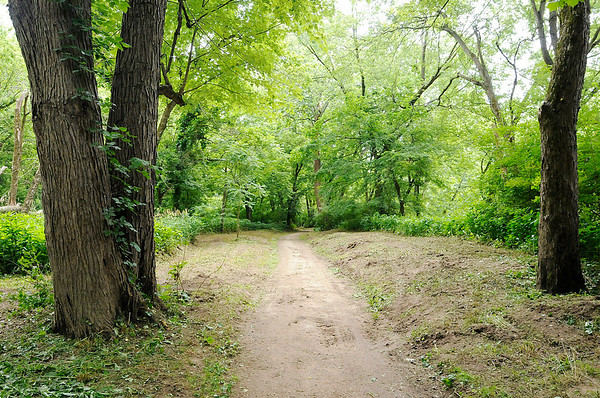 Don Knight | The Herald Bulletin<br /> The city has been clearing brush from the White River trail from Edgewater Park to the Scatterfield bridge. The trail runs from Raible Avenue to Scatterfield Road with future plans to extend it to the Rangeline Nature Preserve.