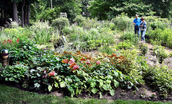 John P. Cleary | The Herald Bulletin  <br /> The 20th annual Madison County Master Gardener Association garden tour took place Saturday with Master Gardener LeAnna Readon's garden featured as one of the six gardens on the tour.