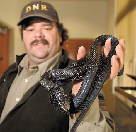 Madison County native snakes on display at Mounds State Park.   Stephen Thompson, interpretive naturalist for Mounds State Park, holds a black rat snake.