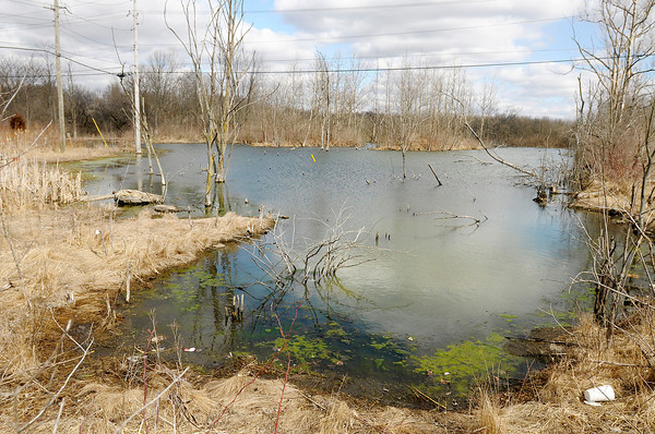 A pond is located behind River Ridge Plaza in Anderson. The proposed Mounds Lake Reservoir would cover two old landfills. One at the site of Mounds Mall and the other across Scatterfield at River Ridge Plaza.