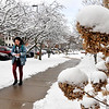 John P. Cleary | The Herald Bulletin<br /> Area residents woke up to a blanket of snow on the first full day of spring Wednesday making roadways slick and delaying some schools. The heavy, wet snow covered the trees and bushes with a four-inch layer making for scenic views like this one on Anderson University's campus.