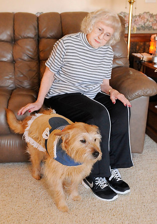 Don Knight   The Herald Bulletin<br /> Carol Rattler dresses her terrier mix Sophie and takes her to nursing homes to visit with residents.