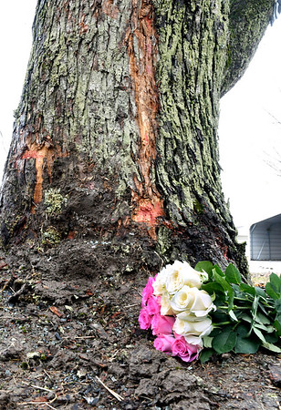John P. Cleary   The Herald Bulletin<br /> This bouquet of roses  was left at the site of a single-vehicle accident that claimed the lives of Jerome T. Thompson, 28, and China B. Shouse, 22, early Thursday morning in the 13500 block of Indiana 32 near Daleville. The vehicle was traveling westbound and left the roadway and struck this tree.