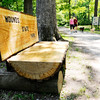 Don Knight | The Herald Bulletin<br /> New benches built from a a large tree felled by a storm provide a resting spot while walking the trails at Mounds State Park. Running and walking the trails are a popular activity at the park and this Memorial Day the park is hosting a walking stick workshop.