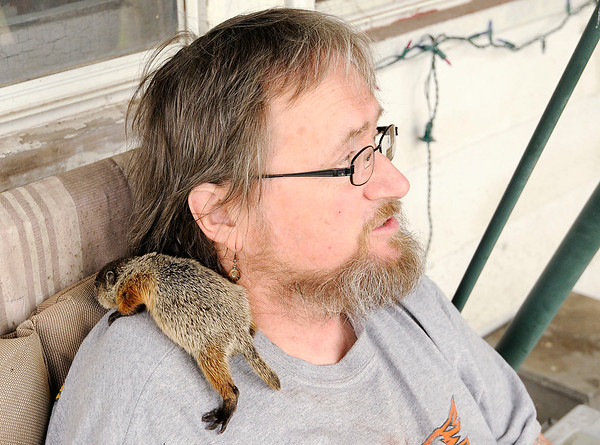 Don Knight | The Herald Bulletin<br /> Nick Ellis is caring for a baby groundhog that was found by a family in Elwood who posted a message about him on Facebook.