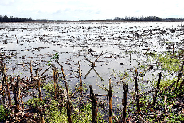 John P. Cleary | The Herald Bulletin <br /> A wet spring has prevented farmers from getting out to prep their fields, let alone start planting their crops. Heavy rains and saturated ground has left many fields with standing water in them like this field in the 4000 block of east CR 300N.