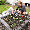 Don Knight | The Herald Bulletin<br /> Sherry Kinkade and her granddaughter Lucy Moore, 5, plant petunias in Kinkade's side yard in Pendleton. More rain is in the forecast for the end of the work week but Sunday is looking dry according to the National Weather Service.