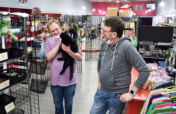 2Guyz Boutique for Pets owners Matt and Marty Spivey-Bevington have some fun with their house cat, Pearl, as they slowly try to re-open their  pet grooming and merchandise business in downtown Elwood.