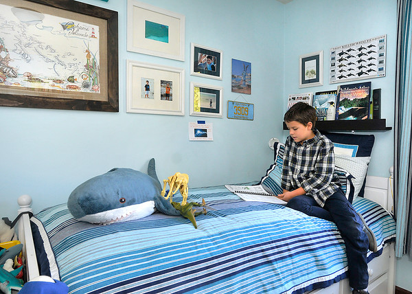 John P. Cleary    The Herald Bulletin<br /> Tristan Fox, 9, reads about his favorite animals in his bedroom where everything is geared to them.