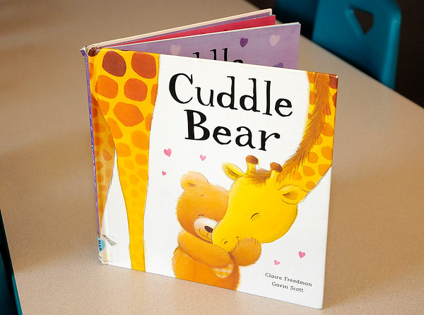 Don Knight |  The Herald Bulletin<br /> Christina Martin is holding a fund raiser to purchase 50 copies of the Cuddle Bear book along with stuffed bears for children at Alternatives.