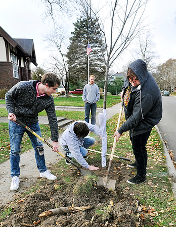 John P. Cleary |  The Herald Bulletin<br /> Students in the Credit Recovery Program of South Madison Community Schools planting trees for their community service project. Here seniors Austin Fault, Jared Wilson, and Cody Brown finish up planting this Elm tree along East State Street in front of the Carnegie Learning Center in Pendleton Tuesday afternoon as Chad Cook looks on in the background.