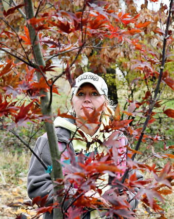 John P. Cleary | The Herald Bulletin<br /> Jennifer Richards, Jaxon Stults aunt, looks over one of the two Emperor One Maple trees that were planted earlier this month for the Jaxon Stults Memorial in the Daleville Park.