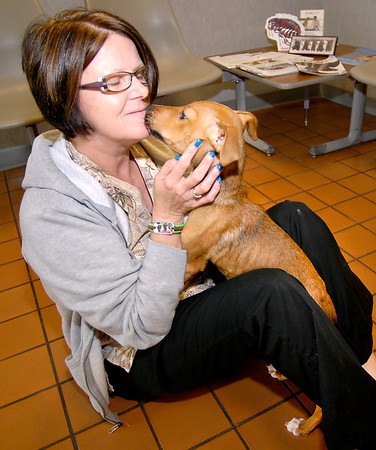 Connie Majors of Devonshire Veterinary Clinic gets a kiss from Grace while the dog is being treated there for malnutrition.  Grace was picked up by APD Monday, along with another dog, and brought to the Animal Protection League where they took them to the vet clinic for treatment.  The other dog died from it's condition but with proper treatment, nourishment, and love Grace has been improving each day.