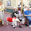 Don Knight/The Herald Bulletin<br /> Liz Frank walks her Labrador Retriever Maggie dressed as Santa Claus during a Pet-A-Pal doggie fashion show at Keystone Woods on Tuesday. Each dog at the Pet-A-Pal show went through several costume changes.