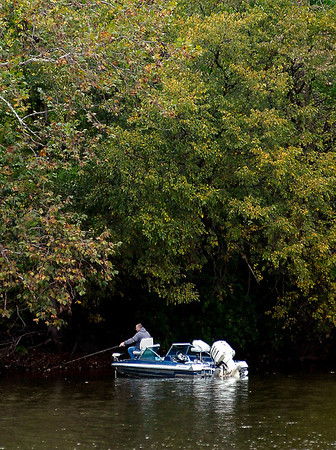 This angler found that the shallow waters near the bank was a good place to fish Thursday at Shadyside Lake  because of the overhanging tree branches that protected him from the constant drizzle that fell during the day.