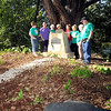 John P. Cleary | The Herald Bulletin<br /> Members of the Summitville Garden Club look over the area of the William Warner Monument just east of town on CR 1650 North that they cleaned out and fixed up the old monument.