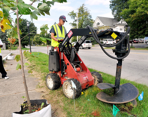 John P. Cleary | The Herald Bulletin<br /> Ranny Hinton, Anderson Parks & Recreation, digs the hole for this tulip tree the city is planting along West 8th Street Wednesday.