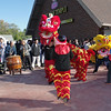 Mark Maynard | For The Herald Bulletin<br /> Designed to expel evil and bring good fortune, the Lion Dance is performed at the Pho Minh Buddhist Temple during opening ceremonies.