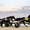 Don Knight | The Herald Bulletin<br /> The horses are off at the start of the second Breeders Crown elimination race at Hoosier Park on Saturday.