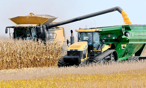 John P. Cleary |  The Herald Bulletin<br /> This farmer dumps his corn on the fly as they work a field along County Road 275 West in Lafayette Twp. this past Tuesday.