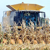 John P. Cleary |  The Herald Bulletin<br /> This farmer harvests his crop this week in Lafayette Twp.