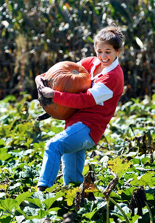 John P. Cleary | The Herald Bulletin<br /> Brooke Ancil. 16, has a hard time making her way through the Smith Family Farms pumpkin patch after picking her prize pumpkin out of the patch.