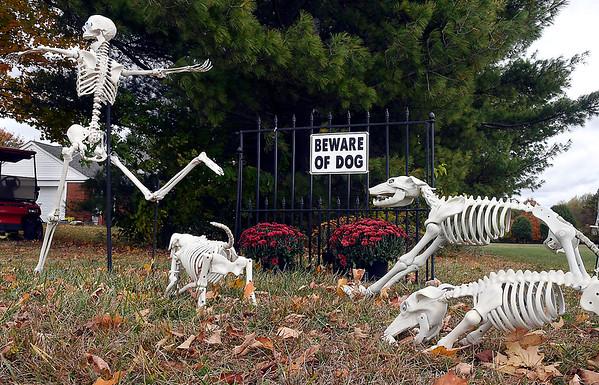 Lloyd and Gail Shinholt with their large Halloween skeleton display.